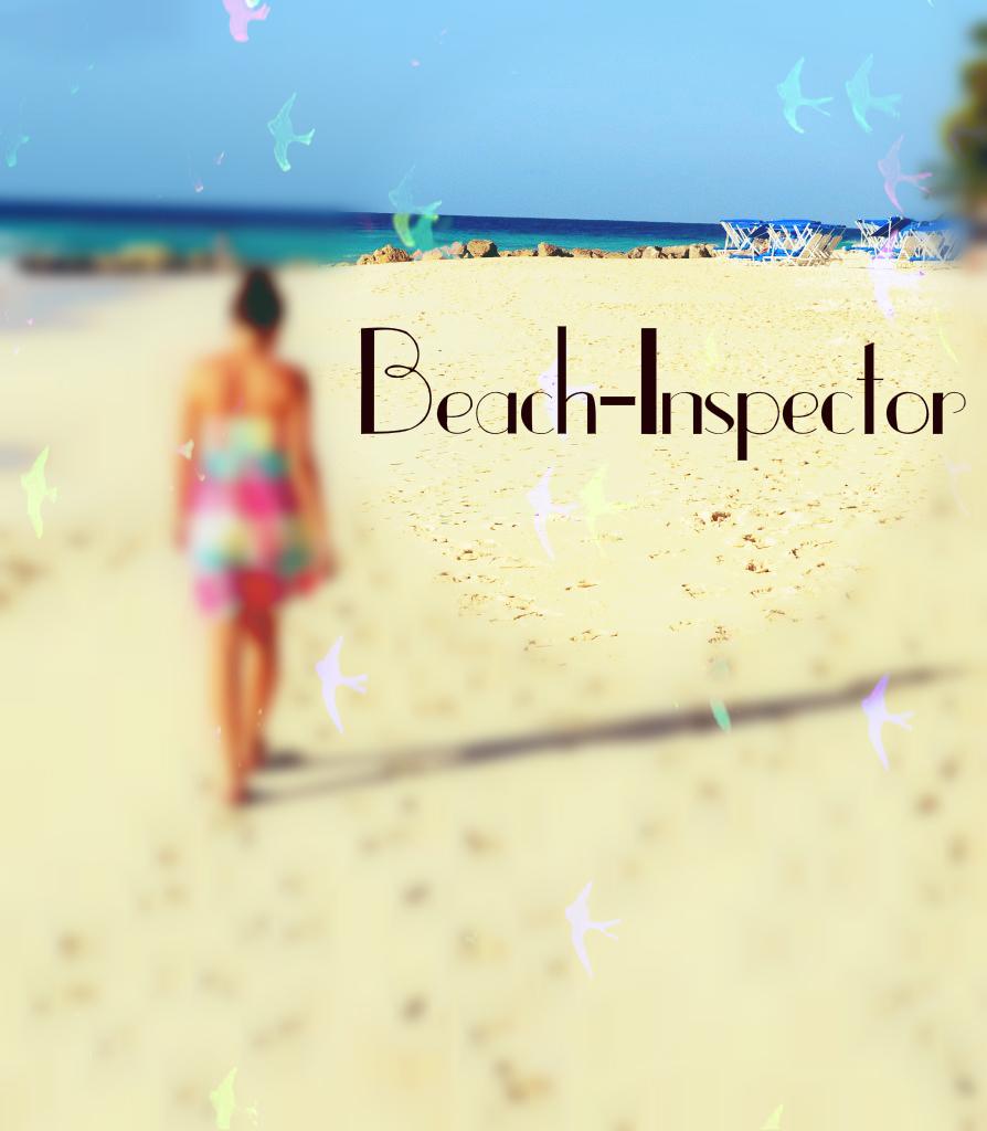 Dein Reisejob: Beach-Inspector