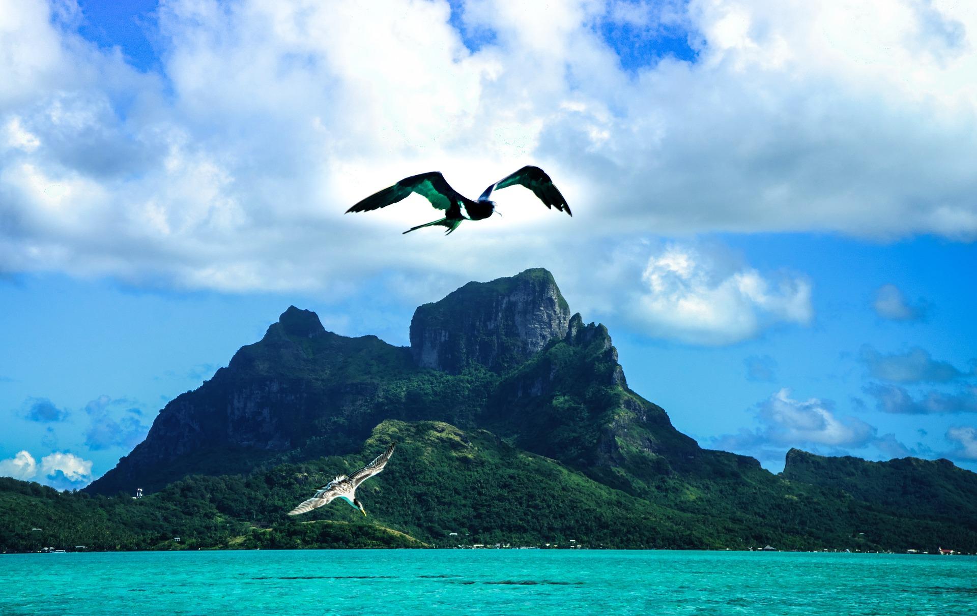 5 Gründe, warum Du unbedingt nach Vanuatu musst!