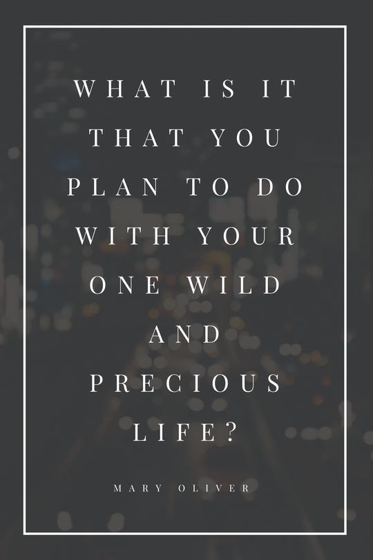Wild Life Placeless